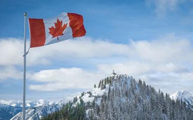 特鲁多和移民部长闹分歧?加拿大雇主担保移民备受中产青睐